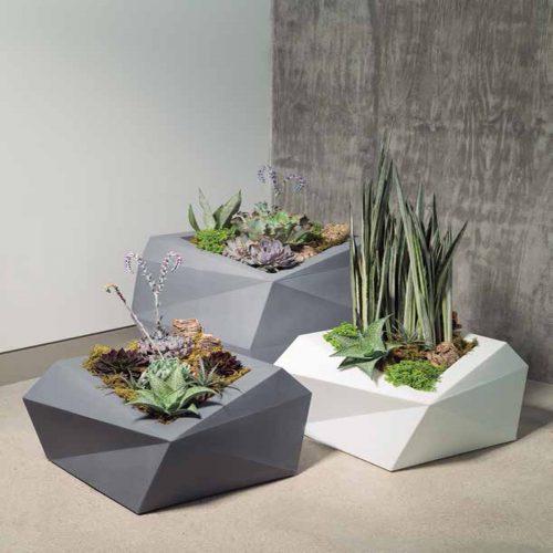 succulents for public spaces