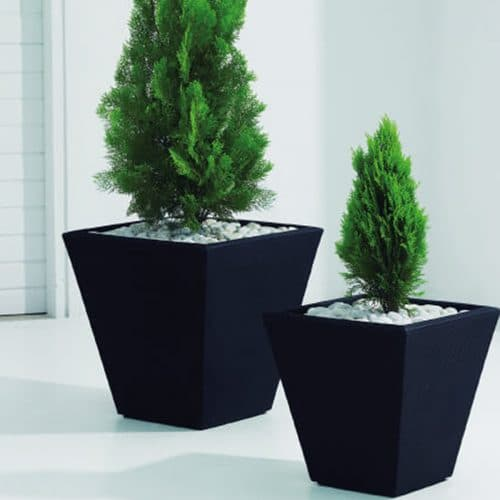 black square planters with green plants